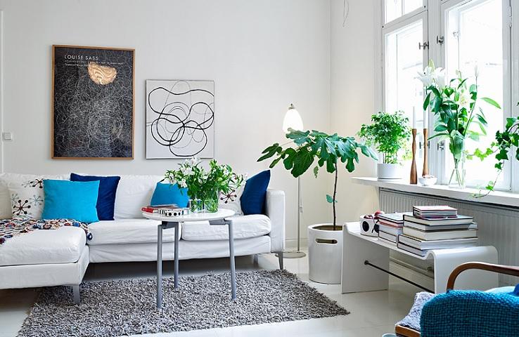 növények nappaliban
