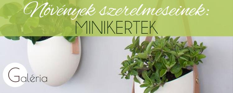 Növények szerelmeseinek: minikertek