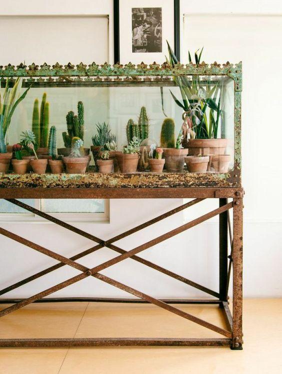 Terrárium állvány növényeknek
